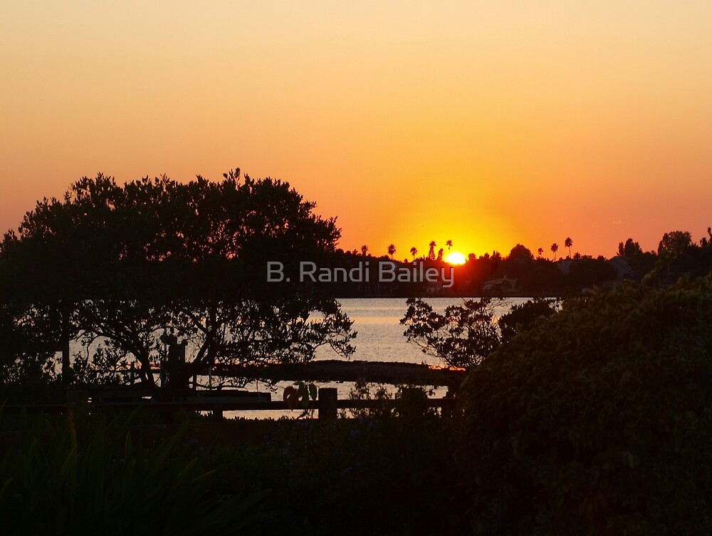 Sunset above the railing by ♥⊱ B. Randi Bailey