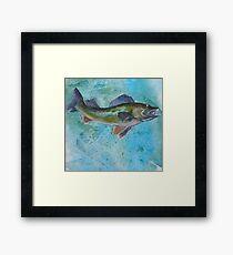 Northern Pike Framed Print