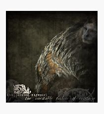 DISAPPOINTED MARMOSET - The Inevitable Failure of Existence... Photographic Print