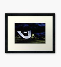 Corset Detail Framed Print