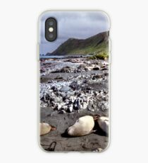 Southern Elephant Seals, Macquarie Island  iPhone-Hülle & Cover