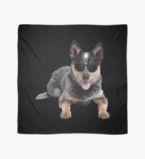 Australian Cattle Heeler Dog In Aviator Dog Lover Scarf
