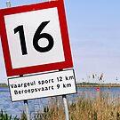 16 by Marjolein Katsma