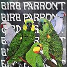 BIRB PARRONT by Skye Elizabeth  Tranter
