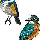 Beste Birdies für immer von undergrass