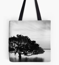 Dusk at Tenby Point Tote Bag