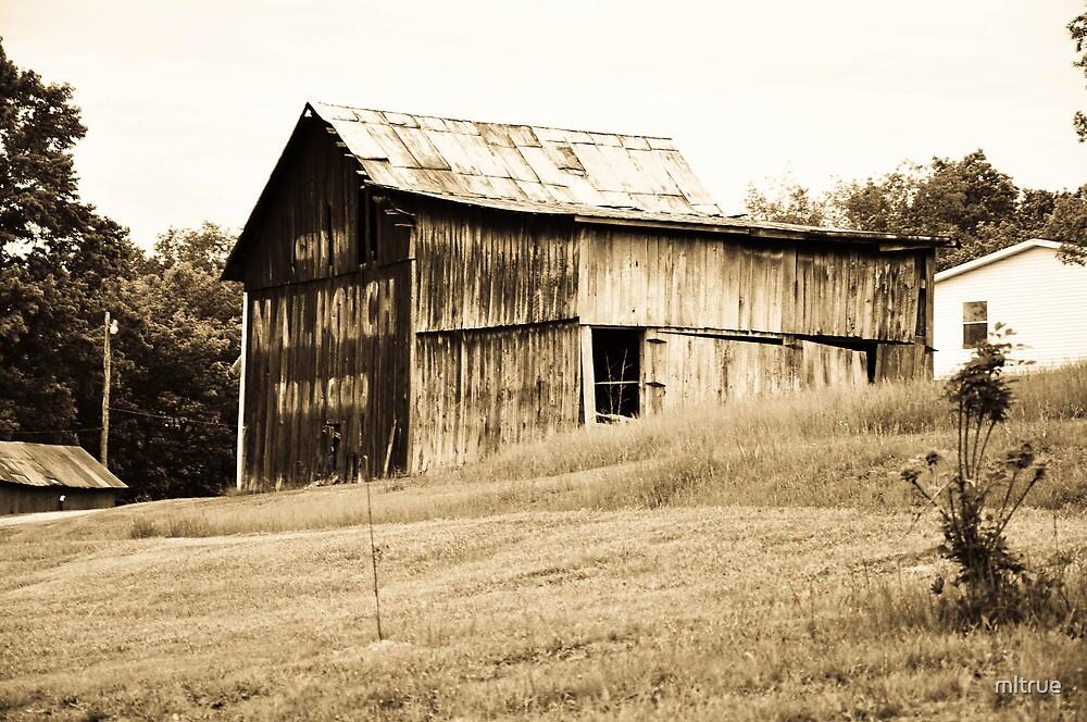 An old barn near Lynn, Indiana by mltrue