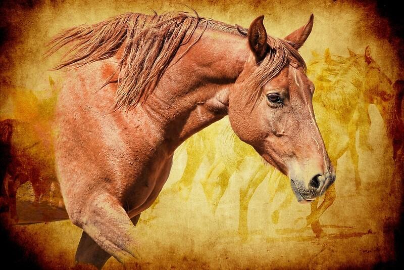 Rabid Horse Artwork Home Facebook - 800×534