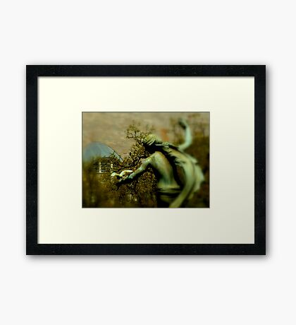 Open The Cage Framed Print