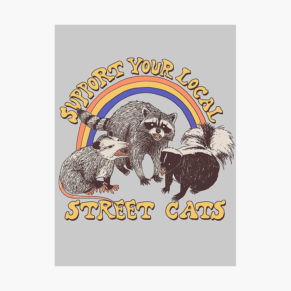 Street Cats Photographic Print