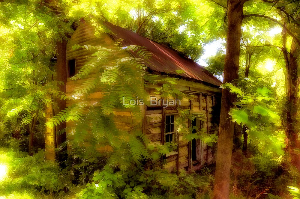 The Fixer-Upper by Lois  Bryan