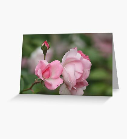 Pink Fantasy Greeting Card