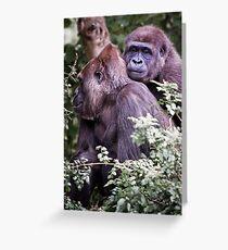 gorilla love Greeting Card