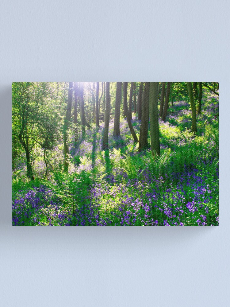 Alternate view of Bluebell Woods Canvas Print