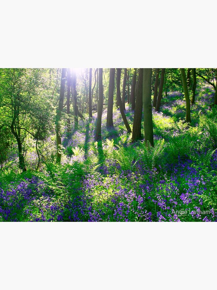 Bluebell Woods by AngelaBarnett