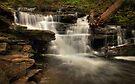 Below Delaware Falls by Aaron Campbell