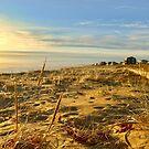 Plum Island in Newburyport, MA by danachirps