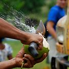 Coconut time by Carl LaCasse