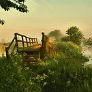 RIVER BLOSSOM by j.p. Howley