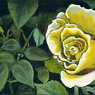 Yellow Rose by minorsaint