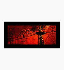 red brocade dreaming Photographic Print