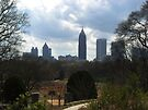 View of Atlanta from Botanical Gardens by ValeriesGallery