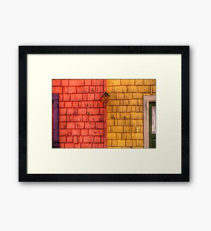 Color Blind Birds Framed Print