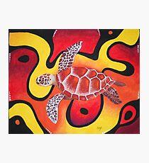 Red Turtle Teddie Photographic Print