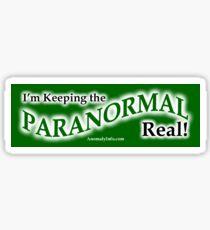 'Keeping it Real' Bumper Sticker Sticker