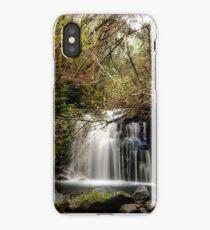 Strickland Avenue Falls,South Hobart,Tasmania iPhone Case/Skin