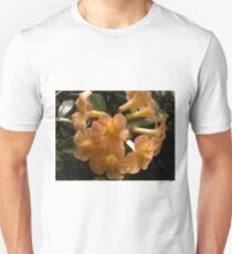 Vireya Rhododendron, Wollongong, Australia. Unisex T-Shirt
