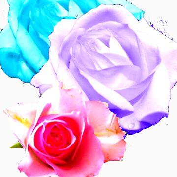 THREE ROSES T SHIRT by Shoshonan