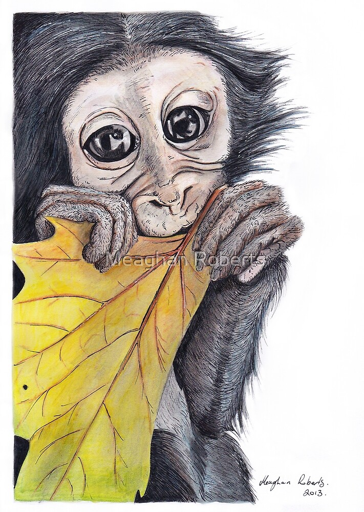 Monkey with Leaf by Meaghan Roberts