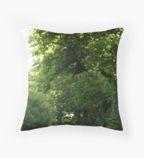 Dracula's Metamorphosis Throw Pillow