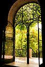 Moorish Garden by ferryvn