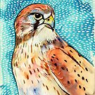 Nankeen Kestrel with Pattern by Paul Oswin