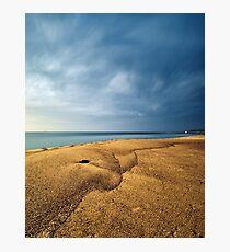 Sand Dolphin, Merewether Beach - Australia Photographic Print