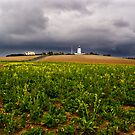 Gathering Storm over North Foreland by Geoff Carpenter