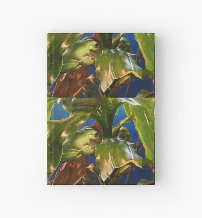 Green Tree Frogs by Rebecca Hansen