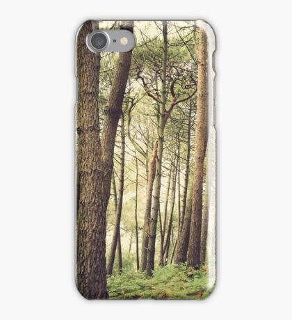 Pine forest iPhone Case/Skin