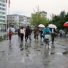 Rain in Wonsan by Marjolein Katsma