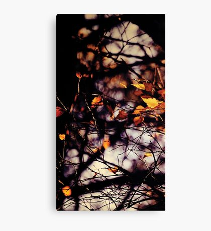 Autumn I Canvas Print