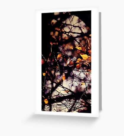 Autumn I Greeting Card