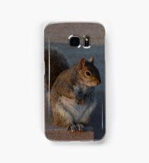 Urban Gray Squirrel Samsung Galaxy Case/Skin