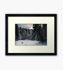 Two in the forest Framed Print