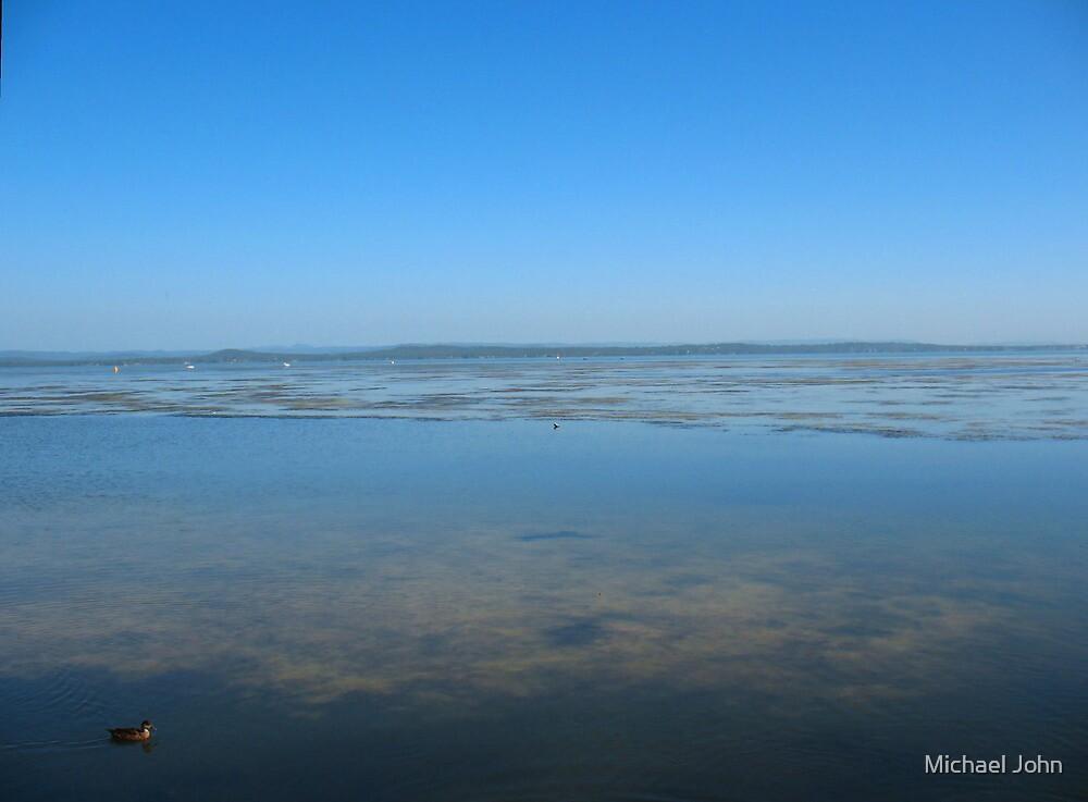 Gliding Duck on Still Blue Waters by Michael John
