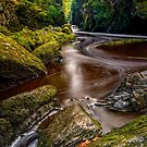 Fairy Glen Gorge Wales by Adrian Evans