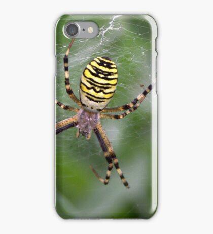 Wasp Spider iPhone Case/Skin