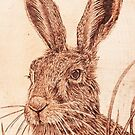 March Hare  by CowshedUK