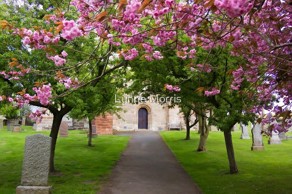 The Churchyard by Lynne Morris